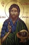 Άγιος Ιωάννης ο Πρόδρομος και Βαπτιστής - Χρωστήρας© (xrostiras.blogspot.com)