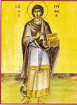Άγιος Τρύφων ο Μάρτυρας - Ο άγιος Τρύφων εικονίζεται ως Ανάργυρος. Αν και δεν ήταν γιατρός, ο άγιος συμπεριλαμβάνεται στην ομάδα των αγίων Αναργύρων, λόγω του μεγάλου θαυματουργικού χαρίσματος που είχε ήδη όταν ζούσε, ιδιαίτερα κατά των δαιμόνων.