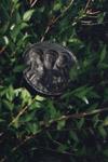 Μολύβδινη κυκλική σφραγίδα με χαραγμένες τις μορφές των τριών Αγίων Θεοφόρων Πατέρων Λευκάδος