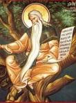 Όσιος Δαβίδ από τη Θεσσαλονίκη