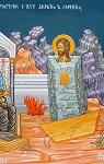 Άγιος Δημήτριος ο Μοναχός από τη Σαμαρίνα της Πίνδου (Ι. Ν. Αγ. Σπυρίδωνα Νεοχωρόπουλο Ιωαννίνων) - Π. Κούβαρη και Ι. Χ. Θωμάς© (icones.gr)